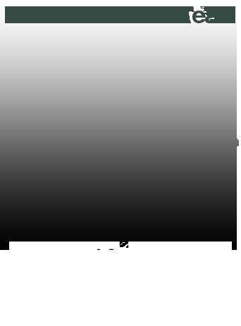 バトルホークスオフィシャルウェブサイト